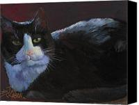 Tuxedo Cat Canvas Prints - Tuxedo Cat Canvas Print by Billie Colson