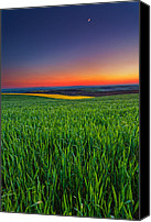 Twilight Canvas Prints - Twilight Fields Canvas Print by Evgeni Dinev