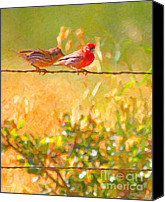 Finches Canvas Prints - Two Birds On A Wire Canvas Print by Wingsdomain Art and Photography