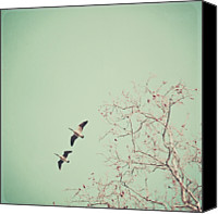 Goose Canvas Prints - Two Geese Migrating Canvas Print by Laura Ruth