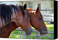Fam Canvas Prints - Two Horses Canvas Print by Yumi Johnson