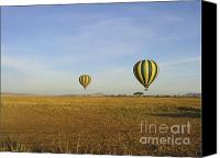 Kenya Canvas Prints - Two Hot Air Balloons Float Over Serengeti Canvas Print by Darcy Michaelchuk