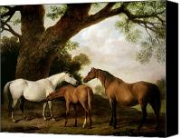 Brown Painting Canvas Prints - Two Mares and a Foal Canvas Print by George Stubbs