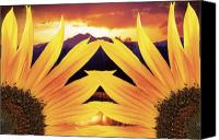 Custom Framed Art Canvas Prints - Two Sunflower Sunset Canvas Print by James Bo Insogna