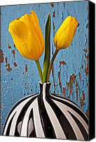 Wooden Tapestries Textiles Canvas Prints - Two Yellow Tulips Canvas Print by Garry Gay
