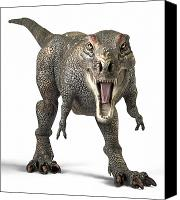 T Rex Canvas Prints - Tyrannosaurus Rex  Canvas Print by Roger Hall and Photo Researchers