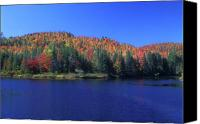 Androscoggin River Canvas Prints - Umbaboag National Wildlife Refuge Canvas Print by John Burk