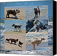 Mutt Canvas Prints - Uninhibited Creatures Canvas Print by Gwyn Newcombe