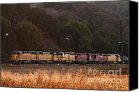 Boxcar Canvas Prints - Union Pacific Locomotive Trains . 7D10551 Canvas Print by Wingsdomain Art and Photography