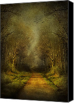 Scene Mixed Media Canvas Prints - Unknown Footpath Canvas Print by Svetlana Sewell