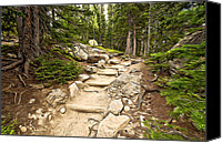 Mountain Trails Canvas Prints - Up The Pathway Canvas Print by James Steele
