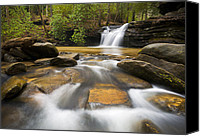 Nature Tapestries Textiles Special Promotions - Upstate SC Waterfall Landscape Photography Blue Ridge Mountains - Flow Canvas Print by Dave Allen