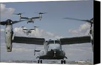 Osprey Canvas Prints - U.s. Marine Corps Mv-22 Osprey Canvas Print by Stocktrek Images
