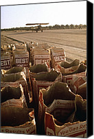Bi Planes Canvas Prints - Used Bags Of Best Chemical Bags Next Canvas Print by Everett