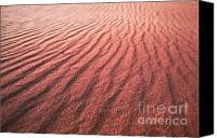 Coral Pink Sand Dunes Canvas Prints - Utah Coral Pink Sand Dunes Canvas Print by Ryan Kelly