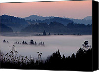 Katie  Wing Vigil Canvas Prints - Valley of Fog Canvas Print by Katie  Wing Vigil