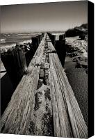 White Seagull Canvas Prints - Vanishing Point Folly Beach Canvas Print by Dustin K Ryan