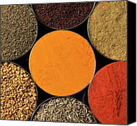 India Canvas Prints - Various Kind Of Spices Canvas Print by PKG Photography