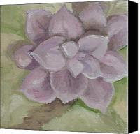 Irene Corey Canvas Prints - Velvet Succulant Canvas Print by Irene Corey