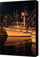 Kodiak Canvas Prints - Venturess Canvas Print by Sam Amato