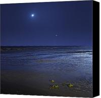 Crescent Moon Canvas Prints - Venus Shines Brightly Canvas Print by Luis Argerich