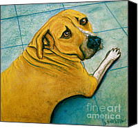 Boxer Pastels Canvas Prints - Vets Office Blues Canvas Print by D Renee Wilson