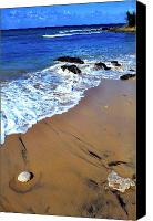 Puerto Rico Photo Canvas Prints - Vieques Canvas Print by Thomas R Fletcher