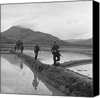 Insurgency Canvas Prints - Vietnam War. Us Marines Move Along Rice Canvas Print by Everett