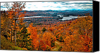 Evergreens Canvas Prints - View From McCauley Mountain II Canvas Print by David Patterson