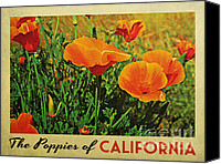 Poppy Digital Art Canvas Prints - Vintage California Poppies Canvas Print by Vintage Poster Designs