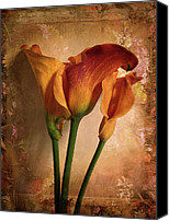 Orange Digital Art Canvas Prints - Vintage Calla Lily Canvas Print by Jessica Jenney