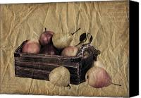 Parchment Canvas Prints - Vintage pears Canvas Print by Jane Rix