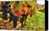 Blue Grapes Canvas Prints - Vintners Serenity 2 Canvas Print by Mars Lasar