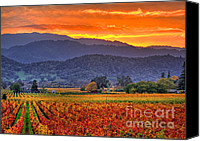 Napa Valley Canvas Prints - Vintners Sunset Canvas Print by Mars Lasar