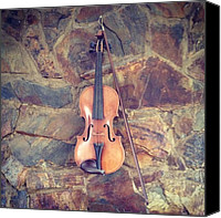 Violin Canvas Prints - Violin Canvas Print by Peter McD