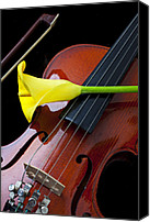 Aesthetic Canvas Prints - Violin with yellow calla lily Canvas Print by Garry Gay
