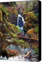 Foilage Canvas Prints - Virgin Greek Falls Canvas Print by Ed Boudreau