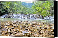 Cedar Canvas Prints - Virginia Waterfalls Canvas Print by East Coast Barrier Islands Betsy A Cutler