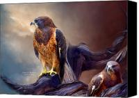 Hawk Spirit Art Canvas Prints - Vision Of The Hawk 2 Canvas Print by Carol Cavalaris