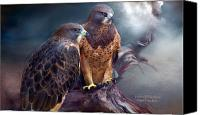 Hawk Spirit Art Canvas Prints - Vision Of The Hawk Canvas Print by Carol Cavalaris