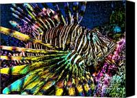 Lionfish Canvas Prints - Volitan Lionfish Canvas Print by Jeff Breiman