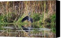 Wing Mirror Canvas Prints - Wading In Heron Canvas Print by Cathy  Beharriell