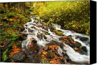 Wahkeena Creek Canvas Prints - Wahkeena Autumn Canvas Print by Mike  Dawson
