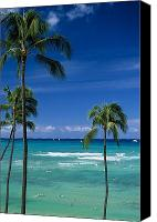 Waikiki Canvas Prints - Waikiki Seascape Canvas Print by Carl Shaneff - Printscapes