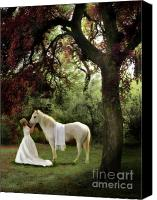White Horse Painting Canvas Prints - Waiting For My Prince Canvas Print by Constance Woods
