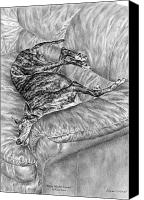 Hound Drawings Canvas Prints - Wake Me for Dinner - Greyhound Dog Art Print Canvas Print by Kelli Swan
