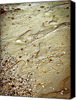 Pebbles Photo Canvas Prints - Walk with Me Canvas Print by Colleen Kammerer