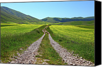 Mountain Scene Canvas Prints - Walking In Castelluccio Canvas Print by Danilo Antonini www.flickr.com/photos/danilo_antonini