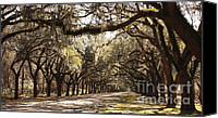 Live Oaks Canvas Prints - Warm Southern Hospitality Canvas Print by Carol Groenen