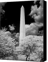 Washington Canvas Prints - Washington Monument During Cherry Blossom Festival in Infrared Canvas Print by Carol M Highsmith